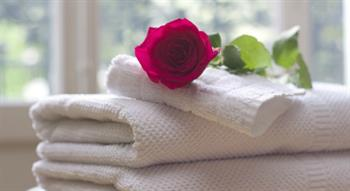 Rose on folded towels